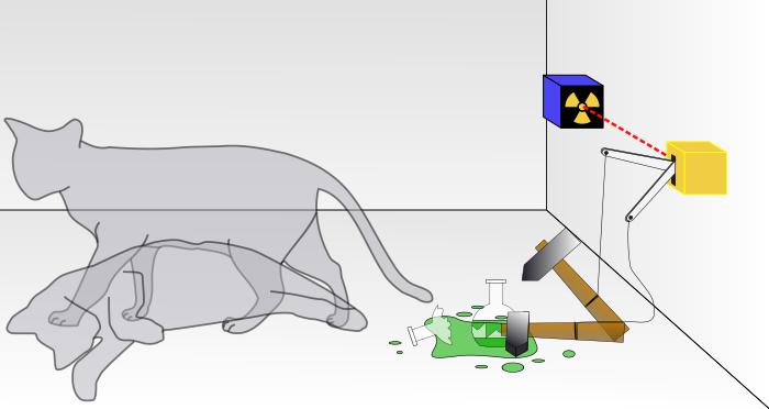 「シュレーディンガーの猫」のイメージ図  出典 : Wikipedia