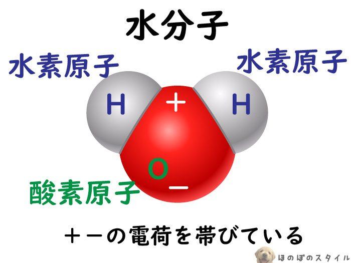 電子レンジ仕組み1 水分子が電荷を帯びている様子