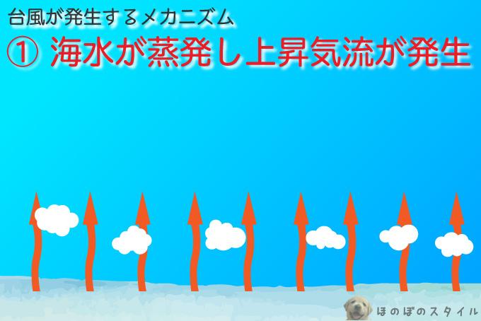 台風が発生するメカニズム~海水が蒸発し上昇気流が生まれる